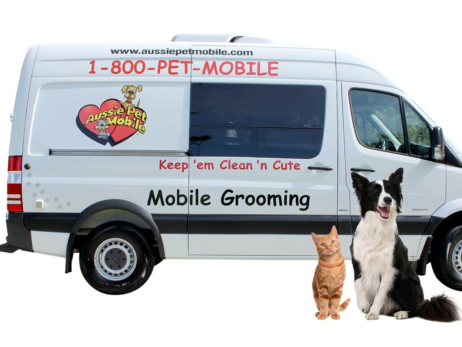 Aussie Pet Mobile Central Albuquerque | Mobile Grooming for Cats & Dogs